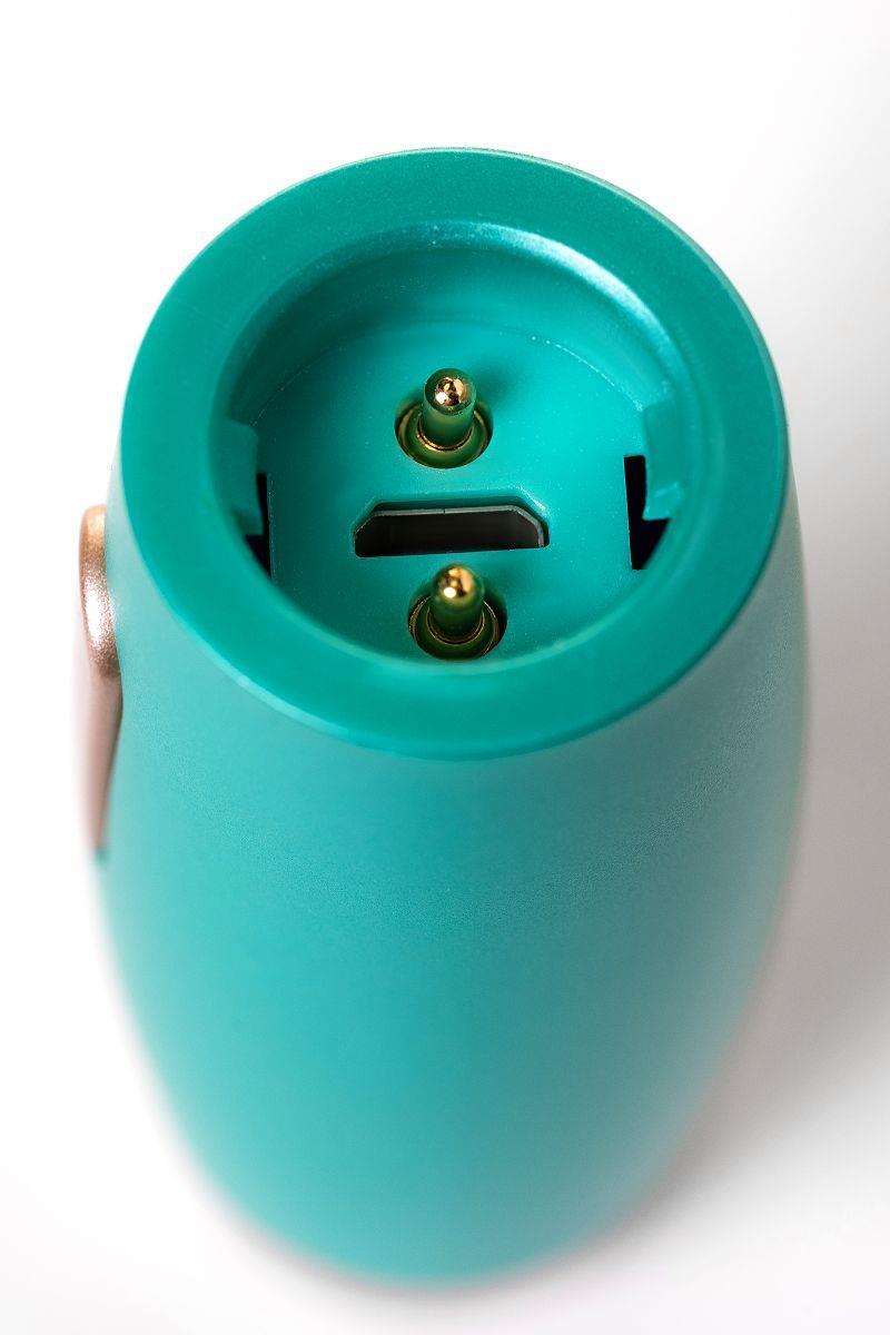Нереалистичный вибратор Le Stelle - PERKS SERIES EX-4 с 2 сменными насадками