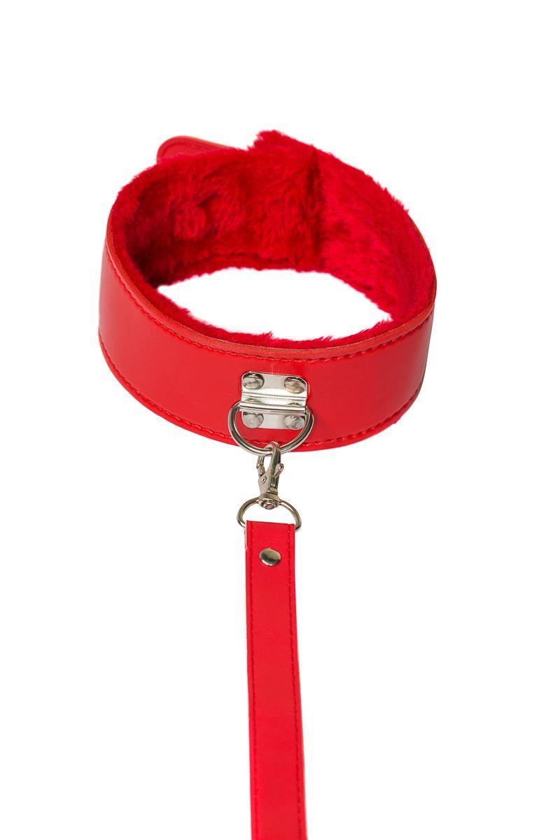 Красный ошейник Circus с поводком