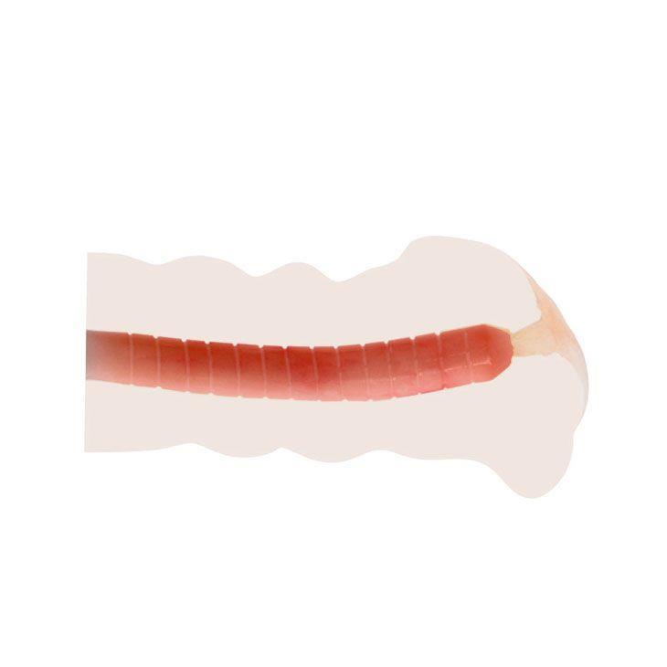 Мастурбатор-вагина с вибрацией